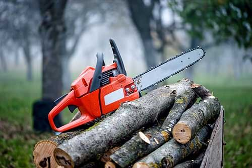 a chainsaw resting on a pile of wood